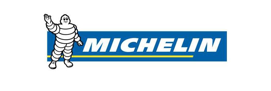 michelin-logo-padding